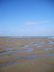 wetland(0.0), beach(0.0), mudflat(0.0), marsh(0.0), horizon(1.0), sand(1.0), sea(1.0), plain(1.0), ocean(1.0), bay(1.0), body of water(1.0), natural environment(1.0), shore(1.0), coast(1.0),