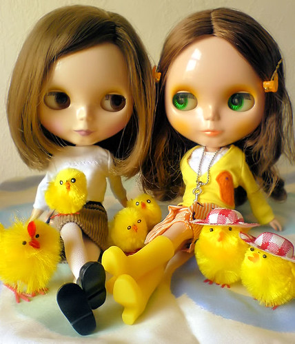 family of chicks by mae and blythe