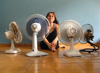 My fan club  (Day 109/365)