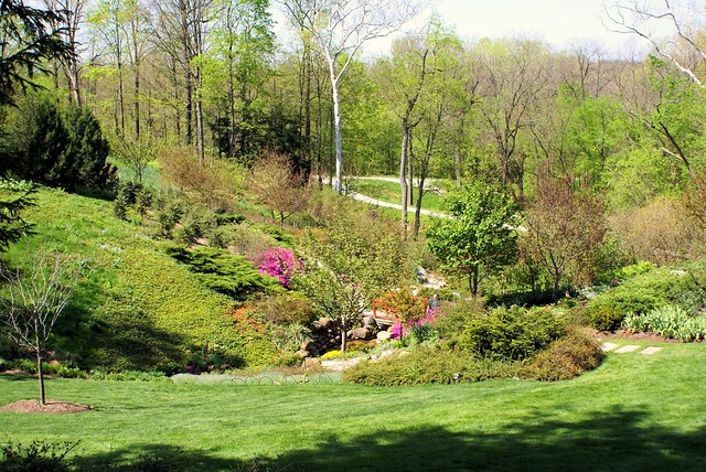 Lilly Gardens Flickr Photo Sharing