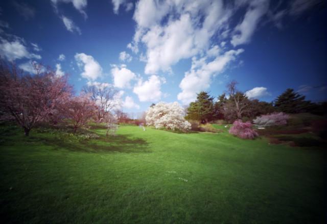 Examples of Pinhole Camera Photos - to watermark