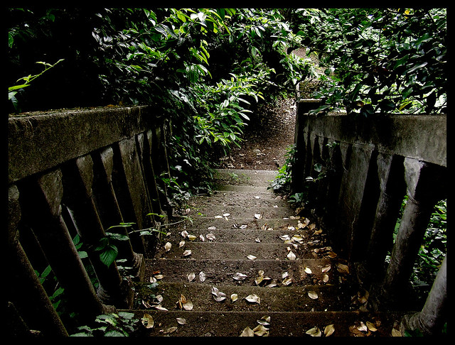 The secret garden (part II)
