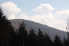 Hang glider over Mt Leinster