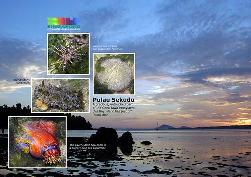 A4 Poster: Pulau Sekudu
