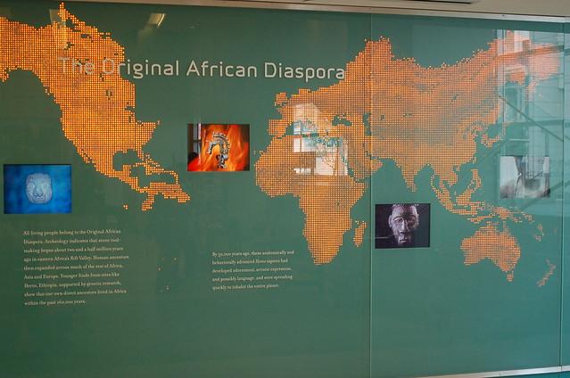 African Diaspora Map