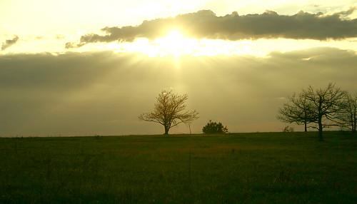 trees sunset sun tree nature clouds virginia va shenandoah sunbeams bigmeadows skylinedrive endofday shenandoahnationalpark snp easternnorthamericanature excellentphotographerawards