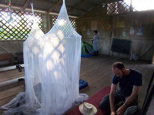 light southamerica sunrise ecuador amazon rainforest phil basin sanjuan jungle schoolhouse sleepingbag mosquitonet