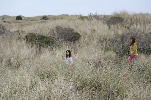 limantour, estero, estuary, point reyes, beach IMG_0402