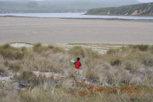 limantour, estero, estuary, point reyes, beach IMG_0394