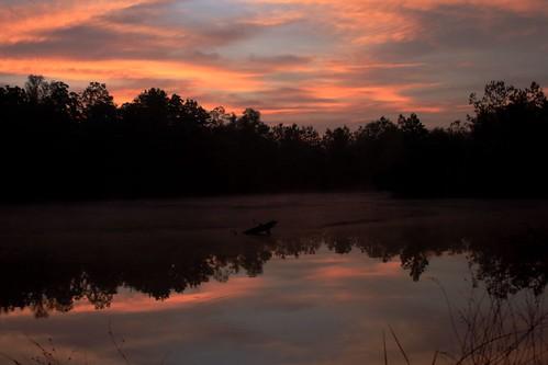 sunrise pond mrgreenjeans gaylon canonef28135mmf3556isusm flickrdiamond diamonclassphotographer dirtpit gaylonkeeling