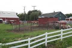 barn, home fencing, farm, fence, ranch, property, stable, pasture,