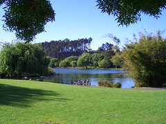 Admire Nature at the Western Springs - Things to do in Auckland