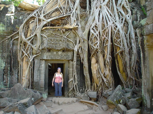 Ta Prohm - Amy finds her roots (arf!)
