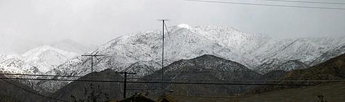 Little San Bernardinos With Snow