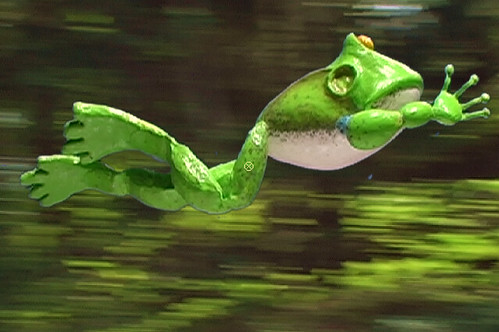 the frog and the faery ~ frog flies