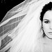 Wilted Bride (13) by Special