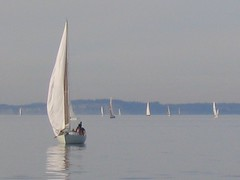 sailing ship(0.0), ice boat(0.0), sail(1.0), sailboat(1.0), sailing(1.0), dinghy(1.0), vehicle(1.0), sailing(1.0), sea(1.0), windsports(1.0), mast(1.0), wind(1.0), watercraft(1.0), dinghy sailing(1.0), boat(1.0),