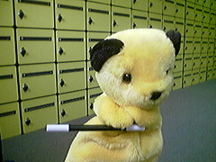sheep(0.0), pet(0.0), polar bear(0.0), giant panda(0.0), teddy bear(1.0), animal(1.0), textile(1.0), mammal(1.0), plush(1.0), stuffed toy(1.0), bear(1.0), toy(1.0),