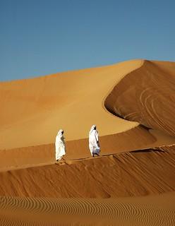 Dune Walking