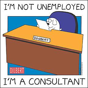 Deilbert Consultant