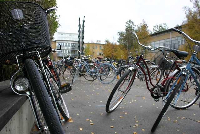 Autumn at the university of Umeå photo by iHanna