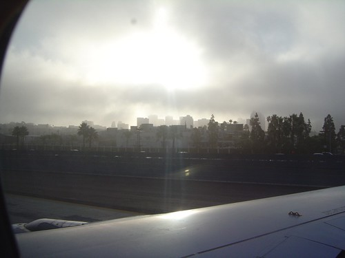 foggie san diego morning.  there really are not very many of them.