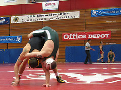 championship, sports, freestyle wrestling, amateur wrestling, physical fitness, athlete,