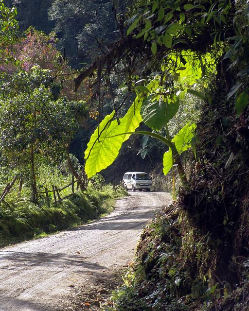 Imagen de la Vía a Termales de Santa Rosa de Cabal