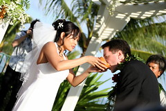 bride, groom, flower, wedding reception, event, wedding, photograph, male, marriage, man, ceremony,