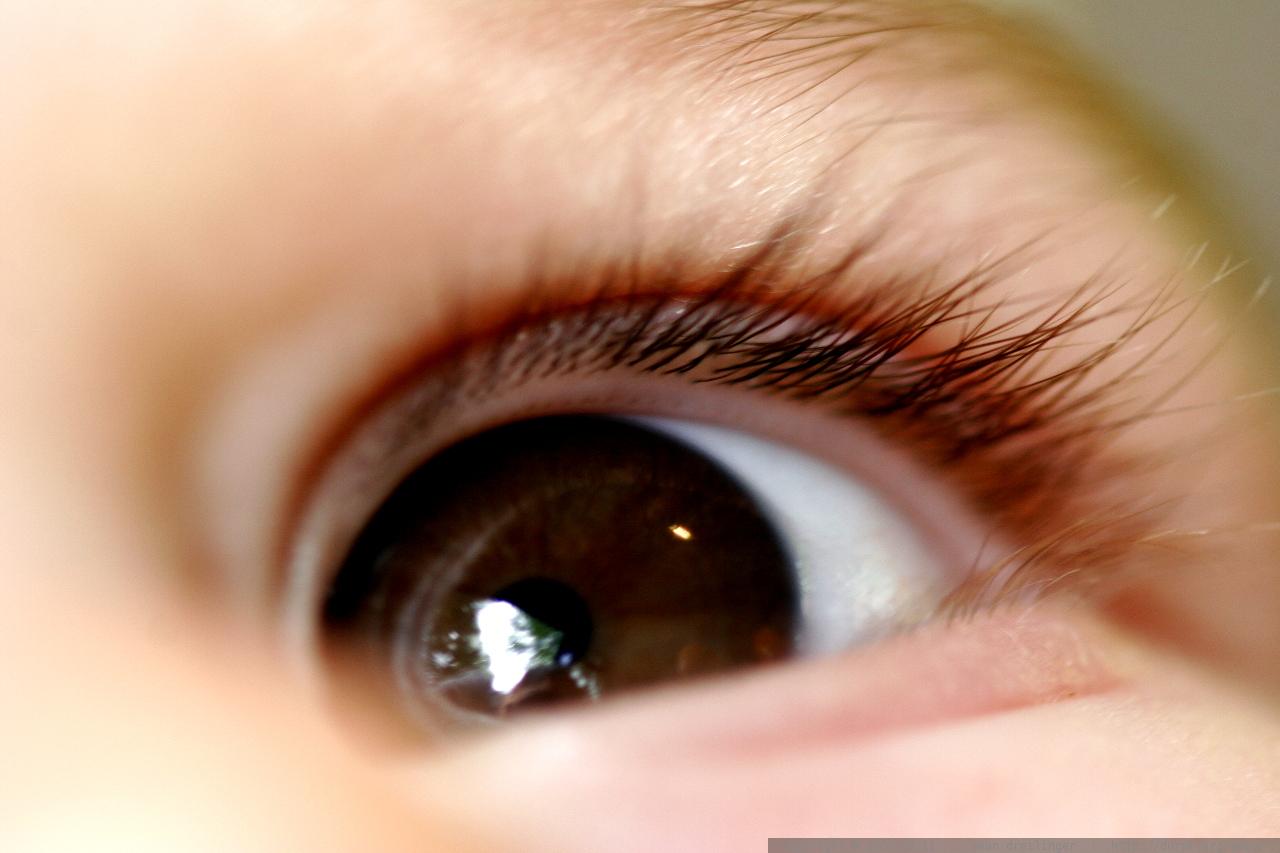 R S Eyelash Design Rye Ny