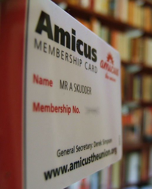 Header of Amicus