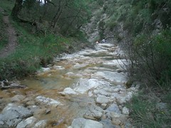 stream, trail, valley, river, creek, body of water, watercourse, ravine, wilderness, wadi, stream bed,