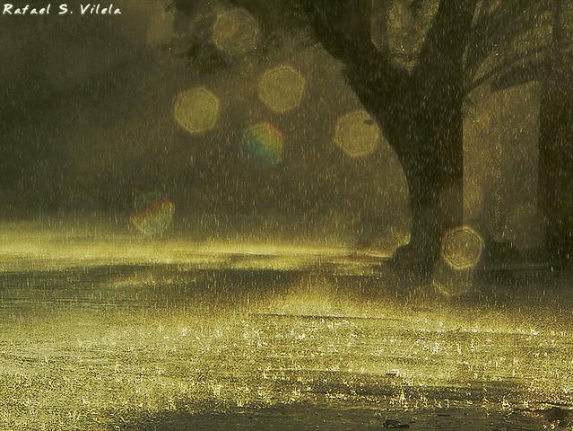 Chove | Falling rain, Panasonic DMC-FZ15