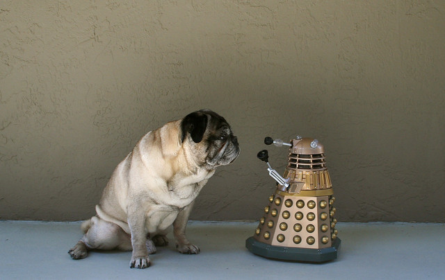 Sarcastic Cyborg Interviewed by Pug