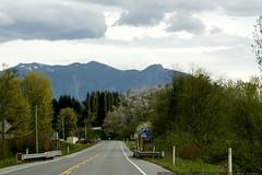 road to snoqualmie, aka twin peaks    MG 3648