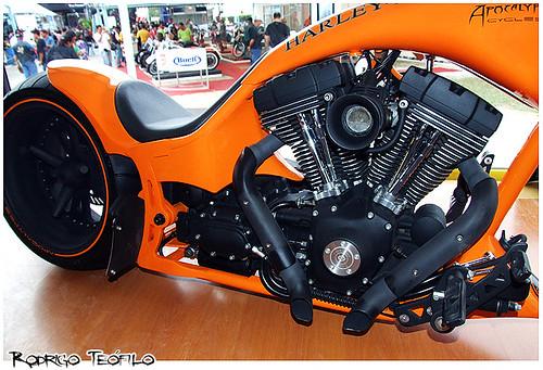 Genoma Harley-Davidson