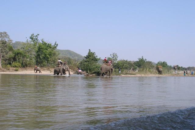 Kok river near Chiang Rai (2007-02-381)