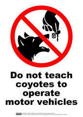 Do not teach coyotes to operate motor vehicles | by guppiecat