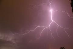 San Antonio Lightning