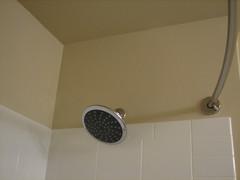 floor(0.0), flooring(0.0), lighting(0.0), sink(0.0), room(1.0), ceiling(1.0), plumbing fixture(1.0), shower(1.0),