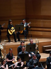 classical music, musician, orchestra, musical ensemble, performance, person,