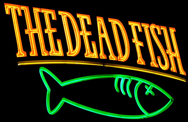 The dead fish flickr photo sharing for The dead fish crockett