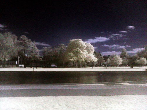 Infrared on Clapham Common