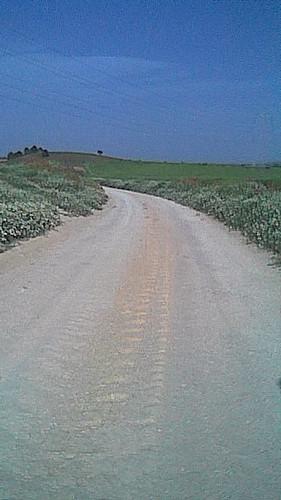 Camino hacia el barranco del Locino