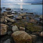 Low Dorset Sun