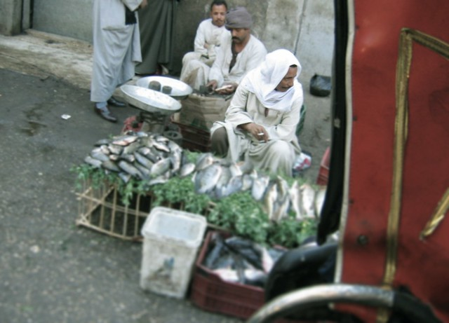Fish seller in Luxor, Egypt
