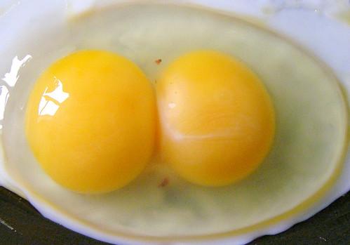 1 egg 2 yolks