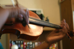 bowed string instrument, violinist, classical music, string instrument, violin, viol, viola, fiddle, violist, string instrument,