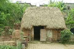 jungle(0.0), thatching(1.0), village(1.0), hut(1.0), cob(1.0), rural area(1.0),