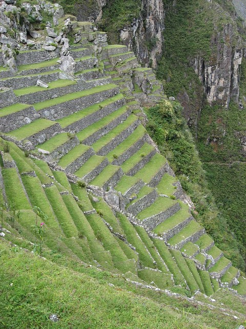 Terrace farming the inca developed an amazing farming for Terrace cultivation
